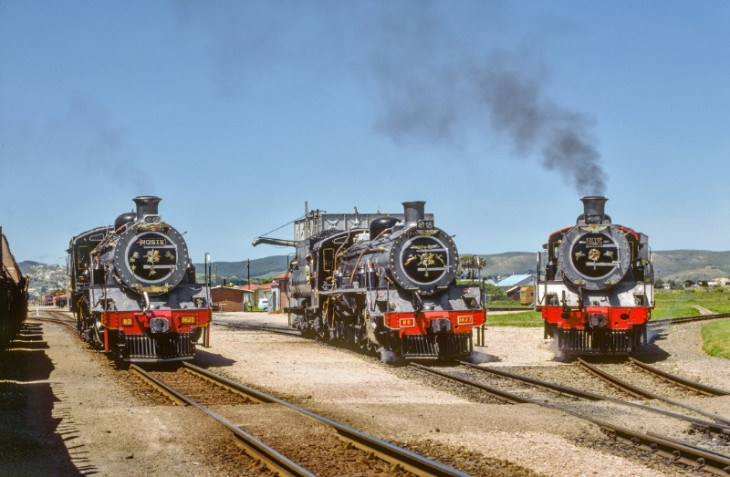SAR Class 24's 3622, 3627 & 3670 stand in the sun at the old Knysna triangle, R.jpg